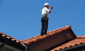 屋根の上にも登って調査