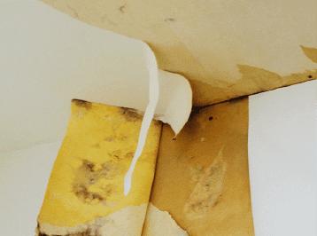 雨漏り(天井)